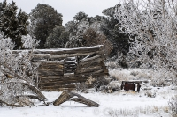 Log-cabin-Highway-491-Utah