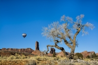 Balloon-and-Cottonwood-tree-Valley-of-the-Gods-Utah