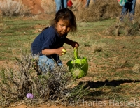 Easter-Egg-Hunt-Navajo-Reservation